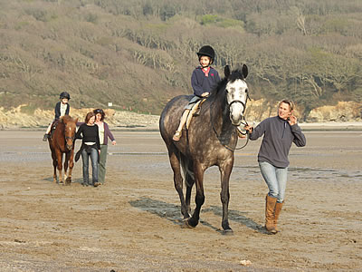 Horse Riding & Pony Trekking